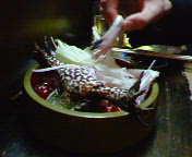 カエルの活き造り