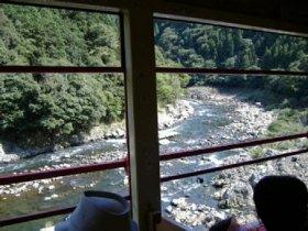 トロッコ列車の窓から眺める保津峡
