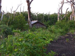 2000年の噴火で泥流と灰に埋もれた椎取神社