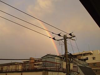 虹をみたかい