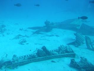 魚たちと、海底に沈む第2次大戦時の米軍戦闘機の残骸