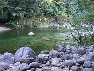 安房川の河辺